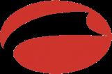 Jinyinhu logo