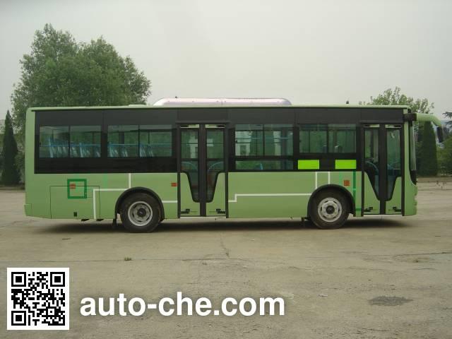 扬子牌YZK6950NJB4城市客车