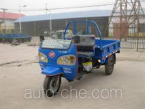 Three-wheeler (tricar)