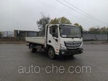 Foton BJ1048V9JEA-FE cargo truck