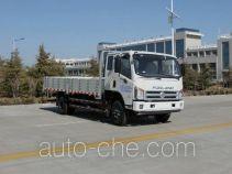 Foton BJ1103VGPEA-A2 cargo truck