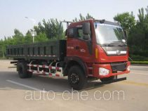Foton BJ3165DJPFK-1 dump truck
