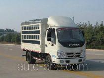Foton BJ5041CCY-BA stake truck