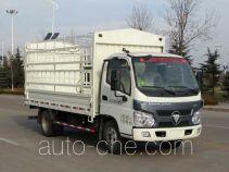 Foton BJ5045CCY-3 stake truck