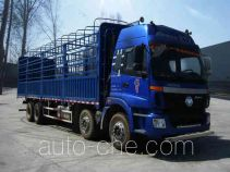 Foton Auman BJ5312CCY-XB грузовик с решетчатым тент-каркасом
