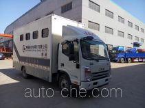 Horse transport van truck
