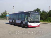黄海牌DD6109B21型城市客车