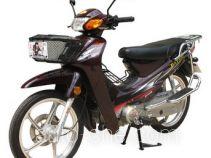 大运牌DY110-2K型弯梁摩托车