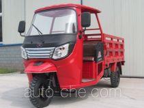 Dayang DY250ZH-9 cab cargo moto three-wheeler