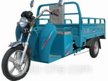 Dayun DY3000DZH electric cargo moto three-wheeler