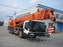 Foton  QY25 FHM5290JQZ25 truck crane