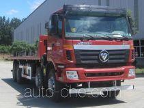 Hongchang Tianma HCL3313BJV43P8E4 flatbed dump truck