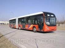 Qingnian JNP6181GC luxury city bus