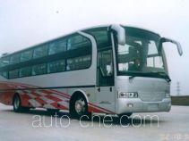 飞燕牌SDL6120WBFD型卧铺客车