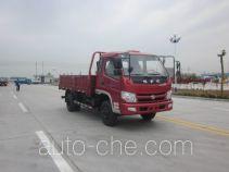 Shifeng SSF1041HDP64-1 cargo truck