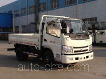 Shifeng SSF1042HDJ52 cargo truck