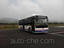 CSR Times TEG TEG6106BEV07 electric city bus