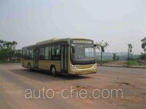 CSR Times TEG TEG6120EV electric city bus