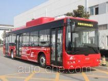 CSR Times TEG TEG6129BEV01 electric city bus