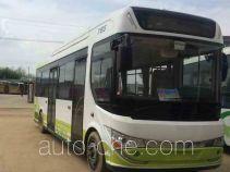 CSR Times TEG TEG6850BEV03 electric city bus