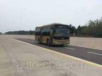 CSR Times TEG TEG6851BEV01 electric city bus