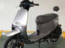 Wanglong WL100T-9 scooter