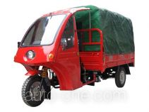 Wanglong WL175ZH-2 cab cargo moto three-wheeler