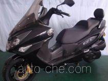 Wangye WY250T-6C scooter