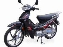 Xinbao 50cc underbone motorcycle