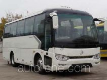 Golden Dragon XML6827J18Y bus