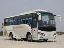 Golden Dragon XML6907J68 bus