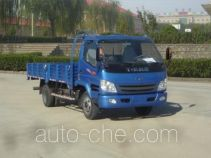 T-King Ouling ZB1040TDD6F light truck