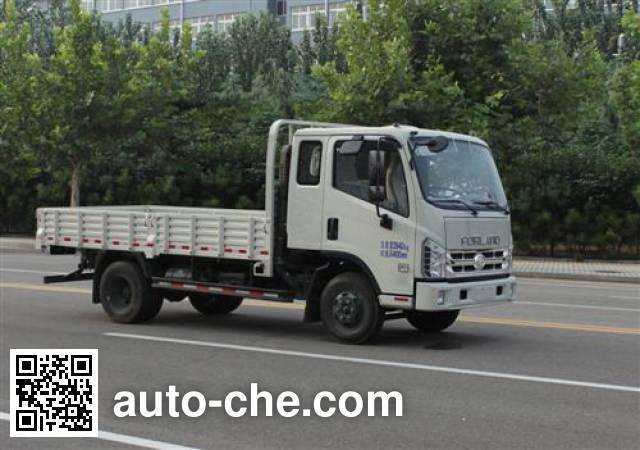 Foton BJ1043V8PDA-K2 cargo truck