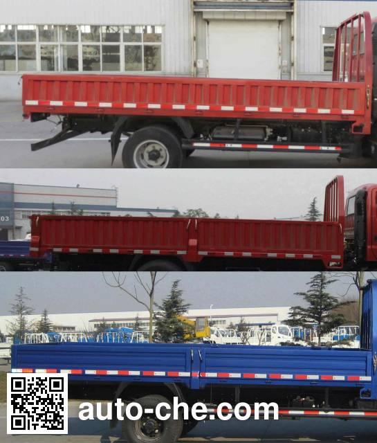 Foton BJ1043V9JD6-AA cargo truck