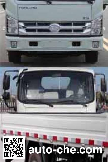 Foton BJ1043V9JEA-B1 cargo truck