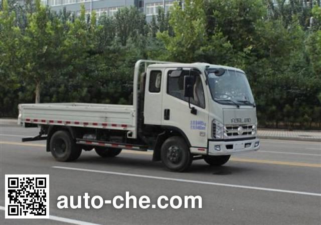 Foton BJ3046D9PBA-FE dump truck