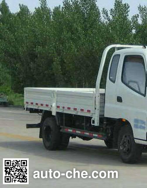Foton BJ1049V8PEA-FA cargo truck