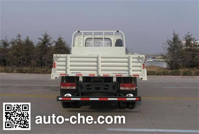 Foton BJ1073VCPFG-L1 cargo truck