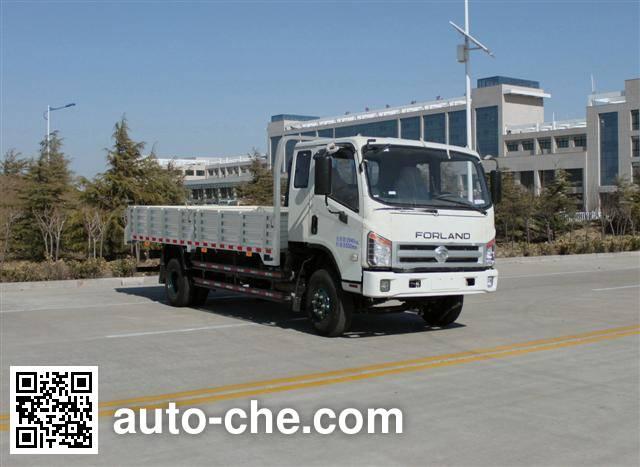 Foton BJ1133VJPFG-L1 cargo truck
