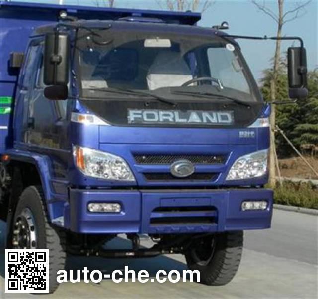 Foton BJ3042D9PFA-G1 dump truck