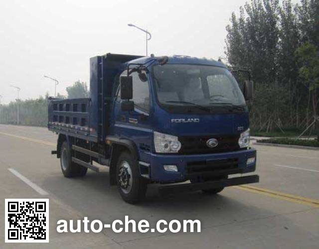 Foton BJ3145DJPFA-1 dump truck