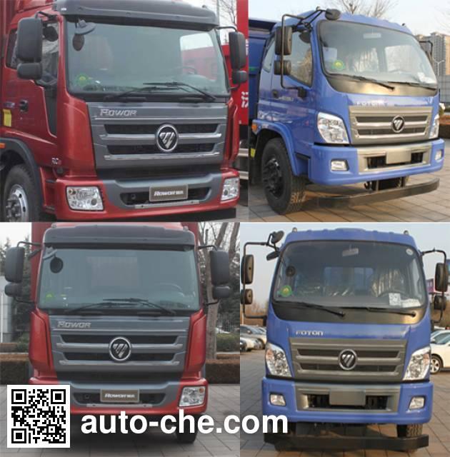 Foton BJ3195DKPFB-1 dump truck