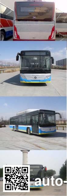 Foton BJ6123C7BTD-1 city bus