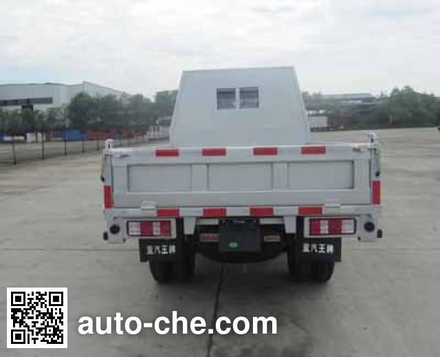 王牌牌CDW4010CD1M2自卸低速货车