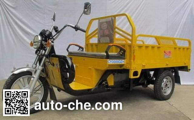 Chuanye CY3000DZH electric cargo moto three-wheeler