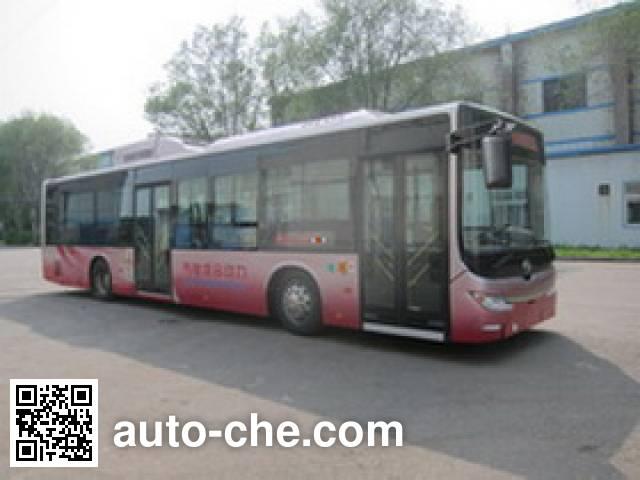 黄海牌DD6120CHEV1N混合动力城市客车