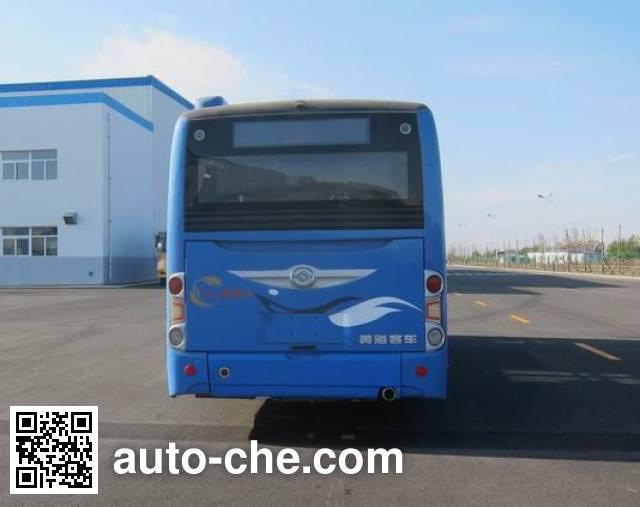 黄海牌DD6851B01城市客车