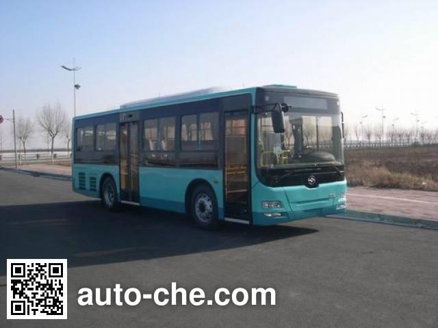 黄海牌DD6930B23N城市客车