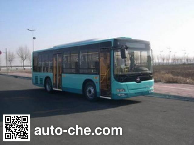 黄海牌DD6930B25N城市客车