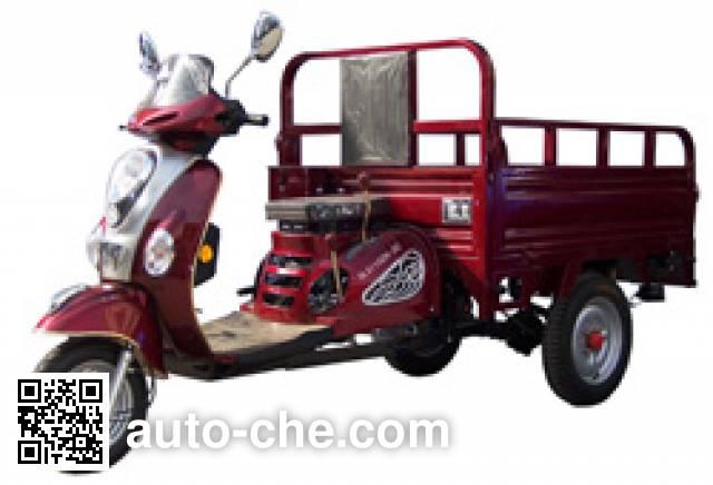 Dalishen DLS110ZH-3C cargo moto three-wheeler